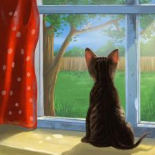 Котик у окна