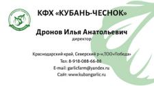 Кубань-чеснок
