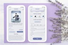Превью заказа и форма оплаты для приложения