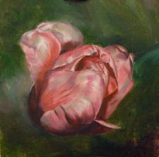 Тюльпан (холст, масло)
