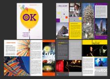 Дизайн журнала (2011)