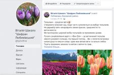 Тюльпани. Рекламний пост