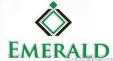 логотип emerald1