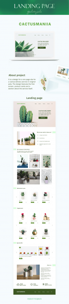 Landing page for cactuses services