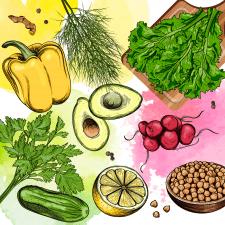 Иллюстрация с овощами