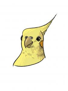 Stiker parrot