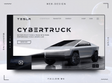 Tesla cybertruck shot
