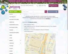 Анализ Интернет магазина svetmos.ru
