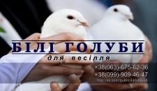 """Візитка """"Весільні голуби"""""""