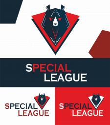 Special league