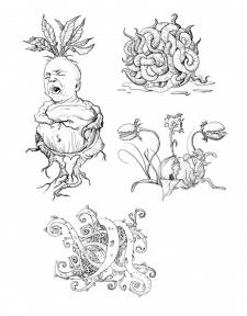 Магические растения из Гарри Поттера