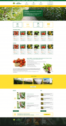 Создание сайта под ключ Adama7.com