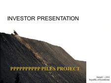 Investor Presentation. Piles Project