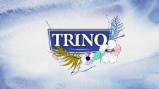 "Logo Animation ""Trino"""