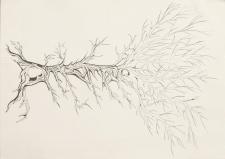 Дерево. графіка