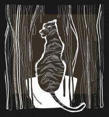 Тигр в лапше