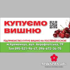 Закупка вишни