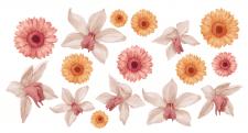 Акварельные орхидеи и гербены