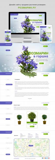 """Дизайн сайта, продажа растения """"РОЗМАРИН"""""""