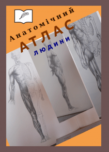 Анатомічний атлас людини