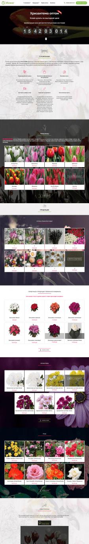 Разработка дизайна и верстка сайта цветов