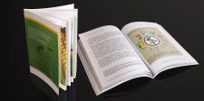 Создание иллюстраций и верстка брошюры