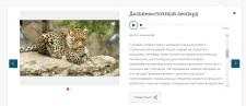 Тексты для аудиогида по Екатеринбургскому зоопарку