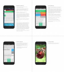 UI/UX mobile organizer