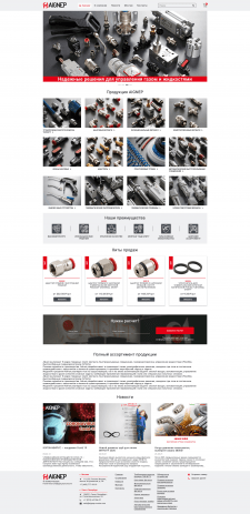 Разработка интернет-магазина AIGNEP
