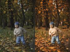Осень. Детское фото