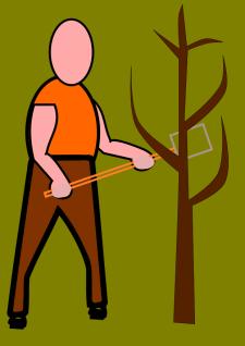 Посадка дерева.