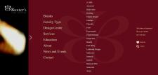 Jewelry Store Web Page