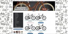 Создание интернет-магазина велосипедов