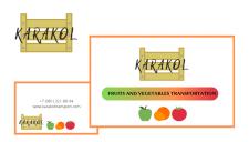 Логотип для сайта + визитка (двусторонняя)