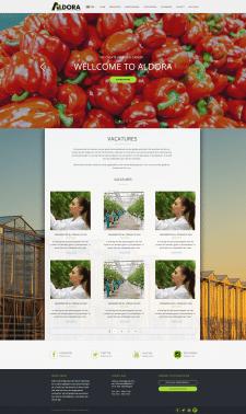 Сайт для Нидерландской компании