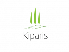 Kiparis