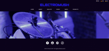 Официальный сайт музыкальной группы ElectroMush