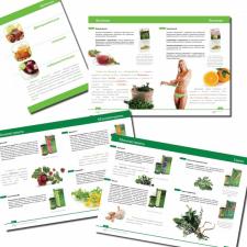 Дизайн и верстка печатного каталога продукции