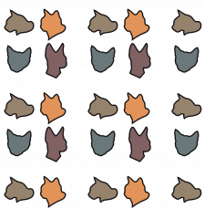 Кошачий паттерн