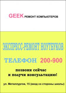 Листовка Geek