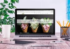 Дизайн сайта и подбор изображений для наполнения
