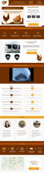 Дизайн сайта для перосъемной машины