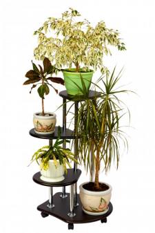 Подставка для цветов (венге)