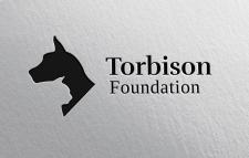 Torbison   Logo Design