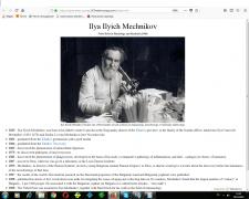 Страницы на HTML, CSS, Bootstrap
