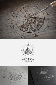 Логотип для компанії Arctica Food