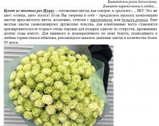 Описание букета желтых роз