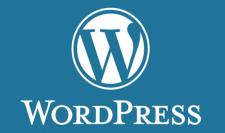 Разработка сайтов на CMS WordPress