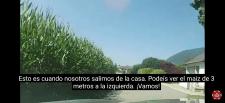 Титры на испанском языке