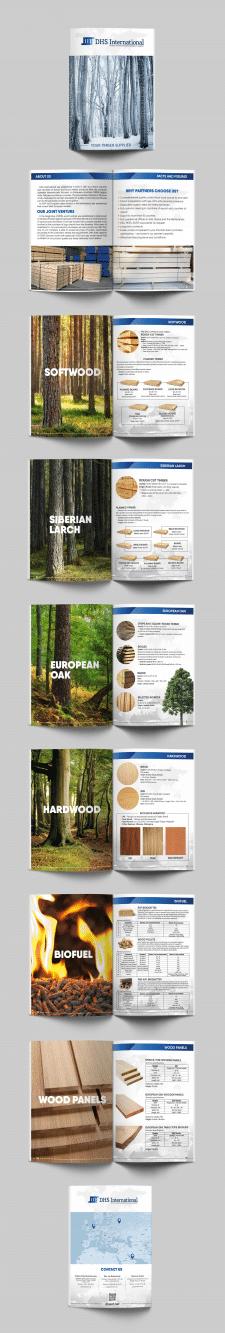 Дизайн буклета-каталога DHS International